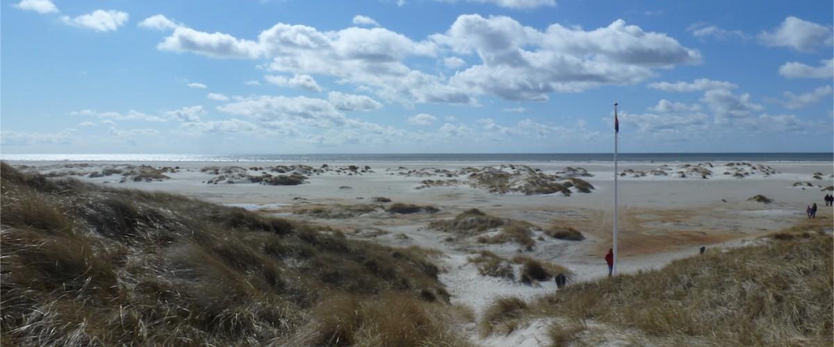 Über den Bohlenweg durch die Dünen direkt zum Strand