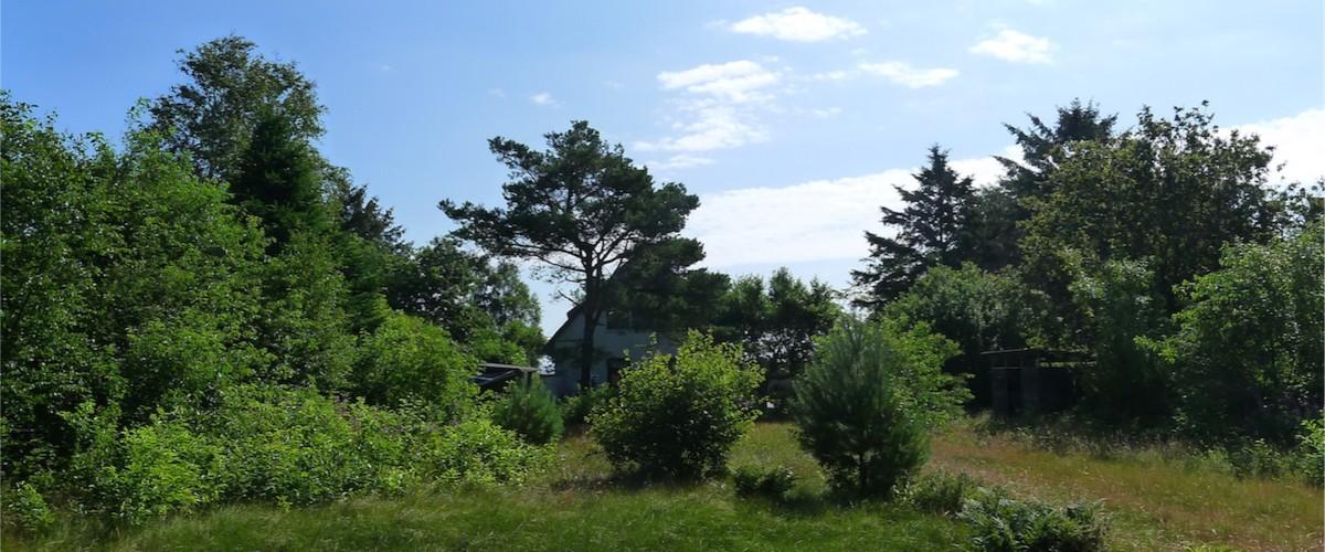 2000 m² Naturgrundstück
